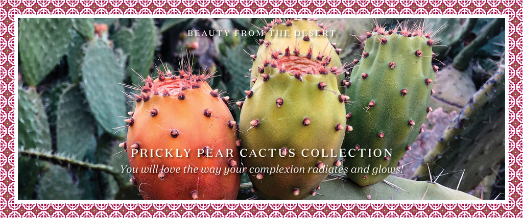 Prickly Pear Cactus Oil from Morocco, Prickly Pear Cactus Oil Face Serum
