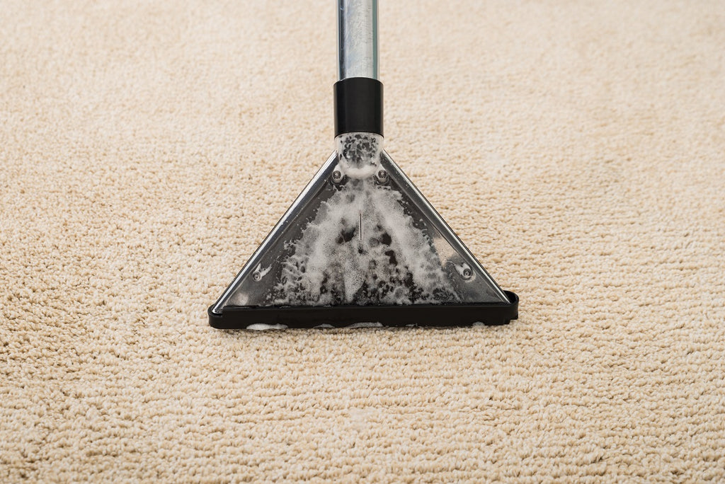 How to Get Rid of Tough Rug Stains