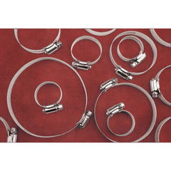 20 Pc Large Hose Clamp Assortment