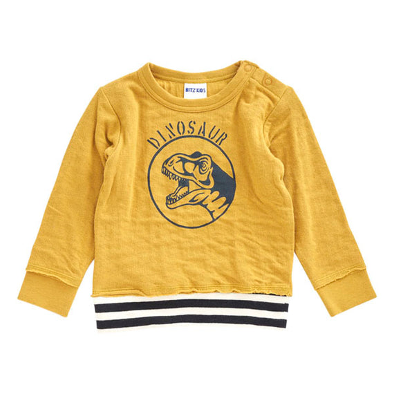 Bit'z Kids Dino Printed Sweat Shirt