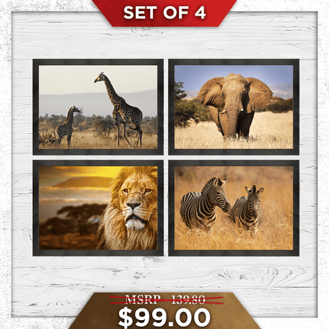 Safari Bundle Set (Canvas) - Redline Steel