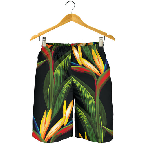Bird Of Paradise Pattern Print Design BOP012 Mens Shorts