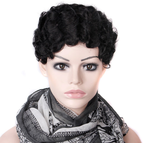 2016 Cheap Wig Women Lady'sCheap Short Black Curly Hair Wig + Wig Net Gift Heat Resistant Synthetic Hair wigs Free Shipping - Gifts Leads