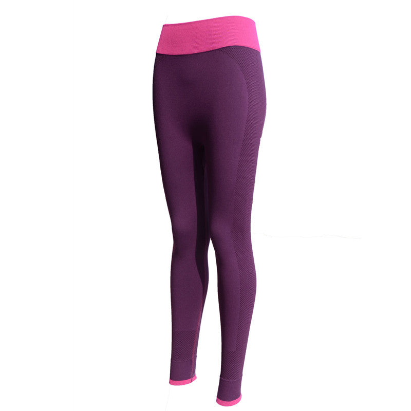 2016  Women Yoga Sports Pants Elastic Wicking Force Exercise Tights Female Sports Elastic Fitness Running Trousers Slim Leggings - Gifts Leads