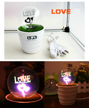 Creative potted lamp Christmas valentine's romantic petard plugged night light  Energy-saving lamps