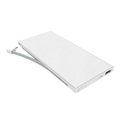 Philips Powerbank 10000mAh Built-In Type C Cable 1.5A + USB 2.1A DLP1130C - White