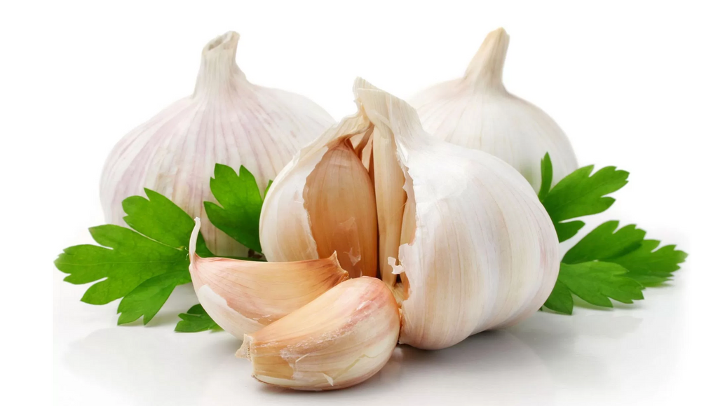 Fight the cold and flu season with Garlic (cooked in your bone broth)