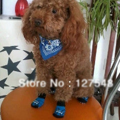 Indoor Soft Cotton Anti-Slip Knit Warm Sock Dog Shoes