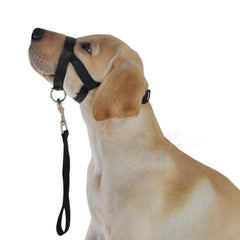 Head Collar Halter Training Nose Reigns Pet Dog