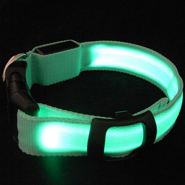 FREE Nylon Pet LED Dog/Cat Collar Night Safety LED Flashing Glow LED Pet Supplies