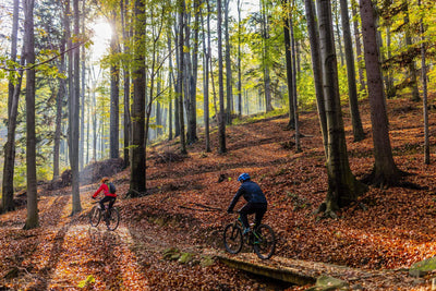 Autumn Cycling Guide | Cold Weather Bicycling Tips