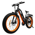 Addmotor MOTAN M-450 P7 750W 11.6 AH Electric Fat Tire Bike
