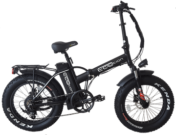 EcoMotion Mini Pro 48V 500W Electric Folding Fat Tire Bike