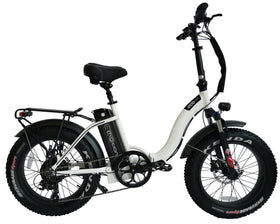 EcoMotion Mini Pro 48V 500W Low Step Electric Folding Fat Tire Bike
