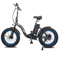 "Ecotric Dolphin 20"" 36V 500W Fat Tire Folding Electric Bike"