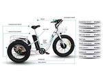 Emojo Electric Bikes Emojo Caddy 48V 500W Fat Tire Tricycle eBike