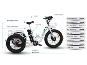 Emojo Caddy 48V 500W Fat Tire Tricycle eBike