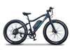 Emojo Electric Bikes One Size / Black Emojo Wildcat PRO HD 48V 750W Fat Tire Electric Bike