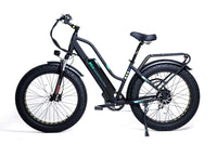 "GreenBike Electric Motion Electric Bikes GreenBike EM26 48V 750W 26"" Electric Fat Tire Cruiser Bike"