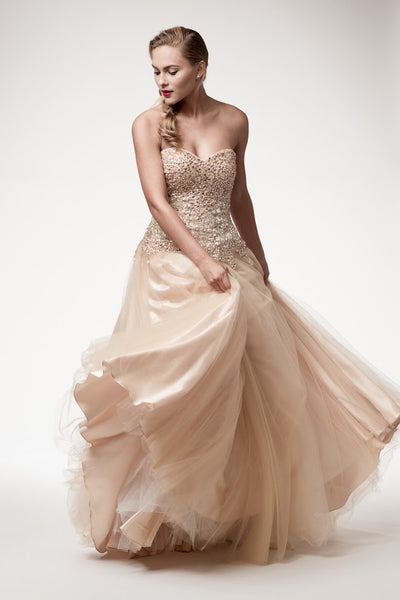 Prom Evening Long Dress - Prom And Bridal Dress House