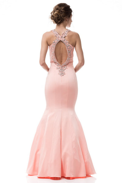 Cute Mermaid Long Evening Dress - Prom And Bridal Dress House