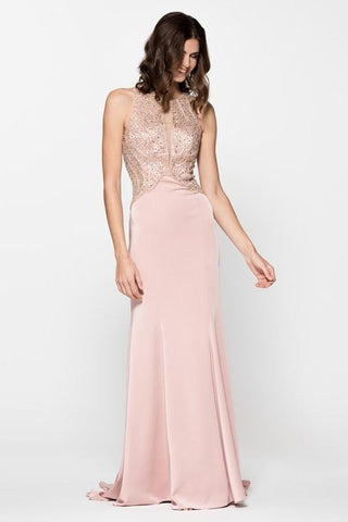 Sleeveless Trumpet Evening Prom Long Dress
