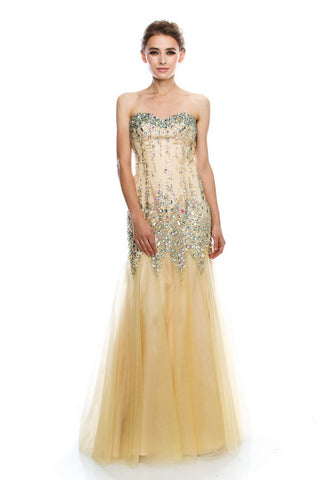 Amazing Champagne Long Evening Dress - Prom And Bridal Dress House