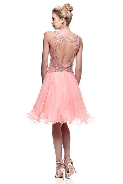 Prom Cocktail Short Dress