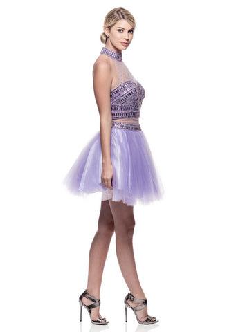 Flawless Lilac Short Cocktail Dress - Prom And Bridal Dress House