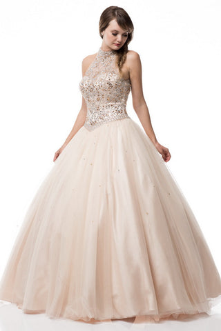 Halter Neck Sleeveless Ball Gown