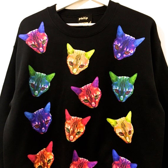 Cosmo the Rainbow Bengal Sweatshirt