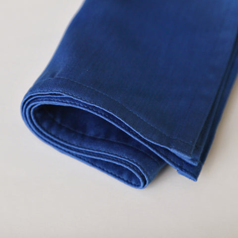 Parrot Blue Cloth Napkin
