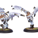 Legion Harriers