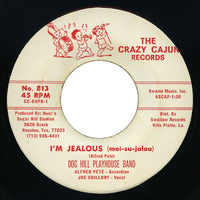 Dog Hill Playhouse Band – I'm Jealous – Crazy Cajun