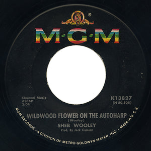 Sheb Wooley – Wildwood Flower On The Autoharp – MGM