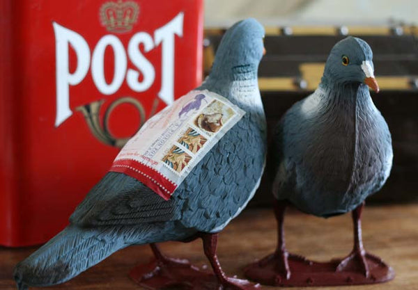 Pigeon Post Kit