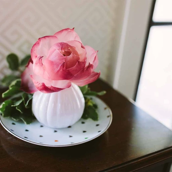 PREORDER: Sweet Grace Flower Diffuser