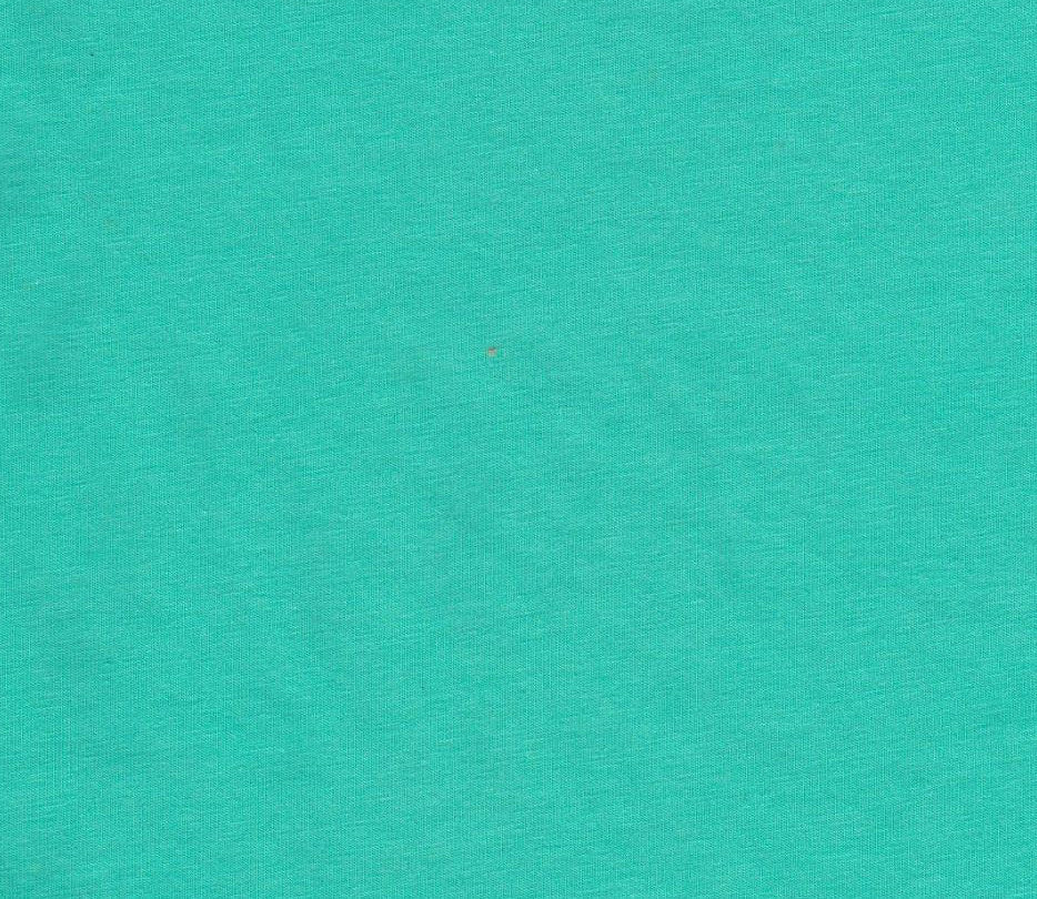 Solid MINT Medium Weight Cotton Lycra Jersey Knit Fabric