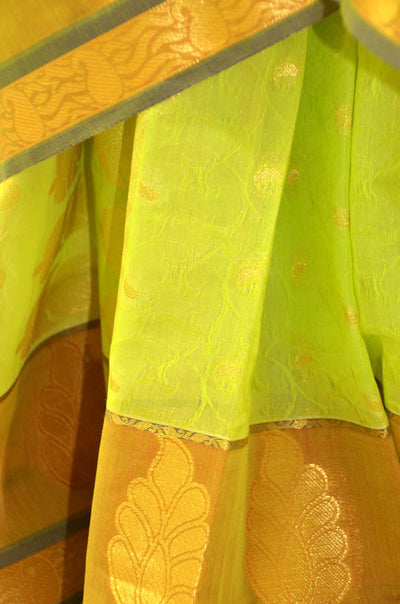 Bright Lime Golden Chandrika- Silk Cotton Saree