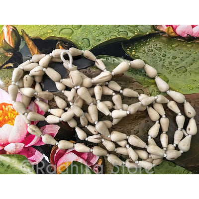 "Conch Shell Shaped Pure Tulsi  Japa Beads - Hang 52"" inches Long"