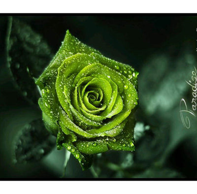 Green Rose- Deity Garland  - Choose size -