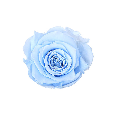 Baby blue Rose- Deity Garland - Size Extra Small