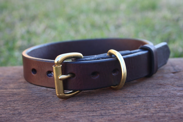 Dog Collar in Rich Brown with Solid Brass Hardware
