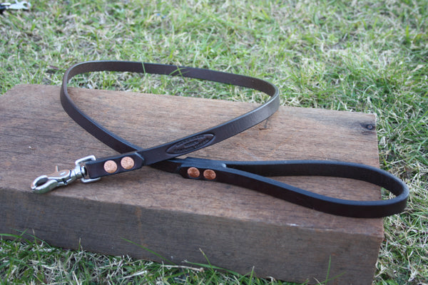 Dog Lead in Rich Brown with Stainless Steel Hardware
