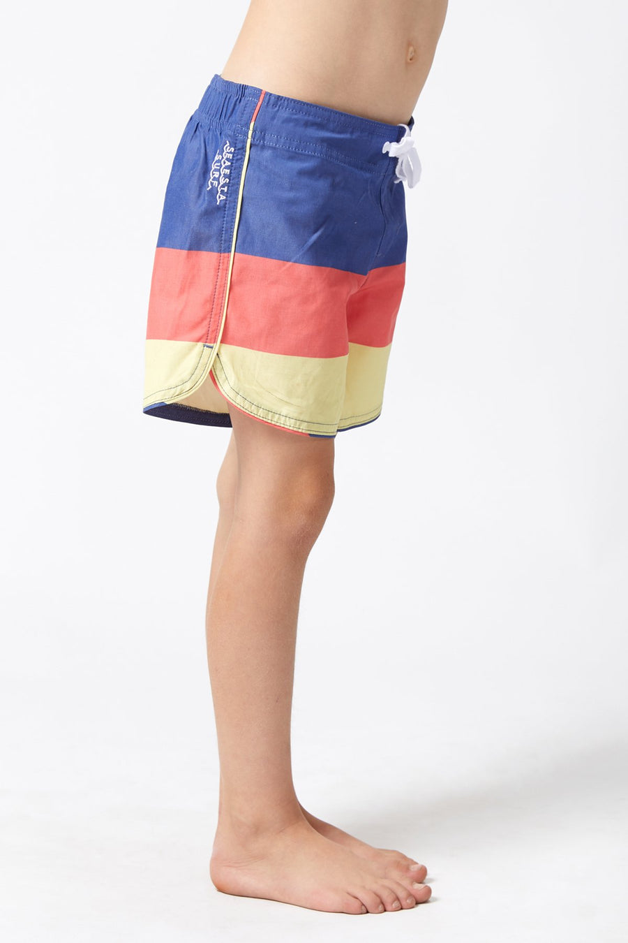Triple Scoop / Velvet / Boardshorts