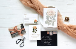 ROSAMUND SCRIPT COLLECTION - RSVP