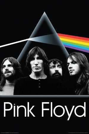 Pink Floyd - Dark Side Group (24x36) - MUS57017
