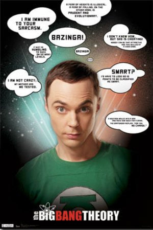 "FLM56023 ""The Big Bang Theory - Quotes"" (22 X 34)"