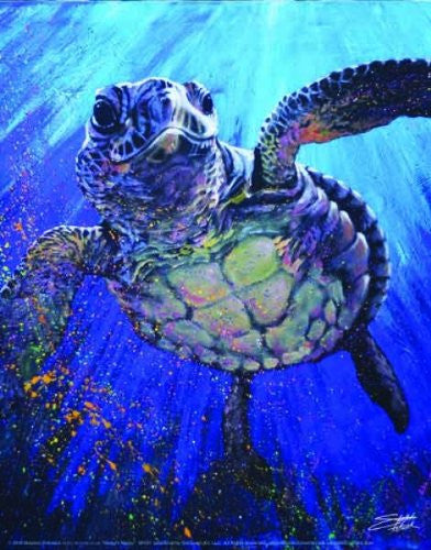 "Stephen Fishwick - Kemps Ridley ""Sea Turtle"" (18x24) - CANV00015"