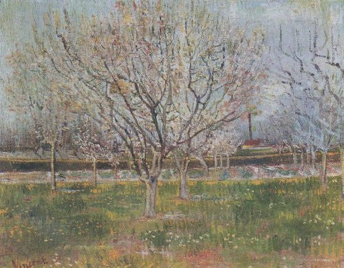 FAR20949 Van Gogh, V. - 'Orchard in Blossom' (23 X 31)
